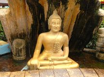 Goldenes Budda Stockfotos