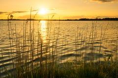 Goldenes Dänemark Lizenzfreies Stockbild