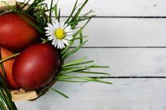 Goldenes Ei über grünem Steigungshintergrund Lizenzfreies Stockfoto