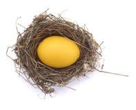 Goldenes Ei in einem Nest lizenzfreie stockfotos