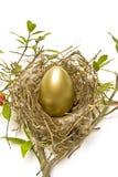 Goldenes Ei im Nest Lizenzfreies Stockbild
