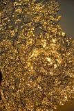 Goldenes Eis Lizenzfreies Stockbild