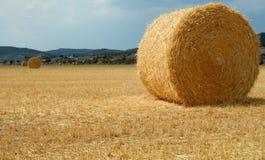 Goldenes Feld mit Strohballen katalonien lizenzfreies stockfoto