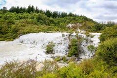 Goldenes Flies, Thermalgebiet Orakei Korako in Neuseeland Stockbilder