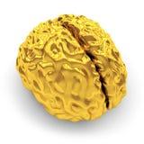 Goldenes Gehirn Stockbild