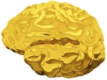 Goldenes Gehirn stock abbildung