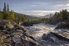 Goldenes helles Glänzen auf dem wilden Fluss, der hinunter die schöne schwedische Landschaft fließt Lizenzfreie Stockfotografie