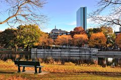 Goldenes Laub in Charles River Reservation stockfotos
