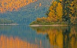 Goldenes Licht auf großem Nictau See stockfotos