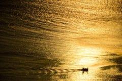Goldenes Meer des Sonnenuntergangbootes Stockbild