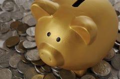 Goldenes Piggybank mit Münzen Stockfotografie