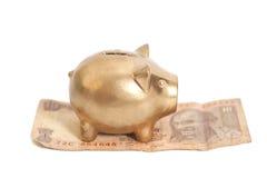 Goldenes Sparschwein auf indischer Rupie Lizenzfreies Stockbild