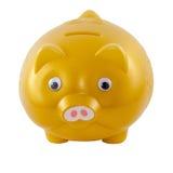 Goldenes Sparschwein vom Vorderseite lokalisiert auf weißem Hintergrund Stockfotos