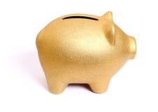 Goldenes Sparschwein von der rechten Seite Stockbilder