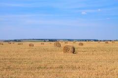 Goldenes Strohstoppelfeld im Herbst Lizenzfreies Stockbild