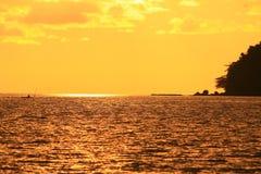 Goldenes Tageslicht Stockfotografie