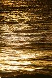 Goldenes Wasser Stockbilder