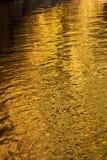 Goldenes Wasser Stockbild