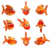 goldenfish 免版税库存照片