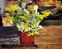 Goldenrod Bouquet Stock Images