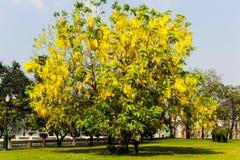 Goldenshower at bang pa in palace Stock Photos