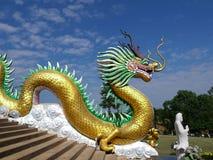 A goldern mystical dragon on stairways Royalty Free Stock Photo