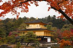 The goldern pavilion, Kinkakuji temple in Kyoto, Japan Royalty Free Stock Images