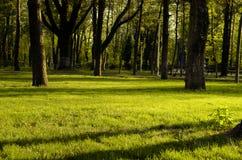 12 2010 golders зеленеют парк принятый сентябрь london ландшафта Стоковые Фотографии RF