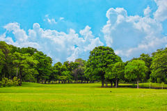 12 2010 golders绿化横向伦敦公园9月需要 库存图片