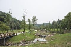 12 2010 golders green den liggandelondon parken tagna september Arkivfoto