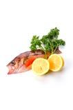 Goldeye rockfish Royalty Free Stock Image
