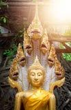 Goldfarbe von Buddha-Statue mit Schlange auf Waldhintergrund an Lizenzfreies Stockbild