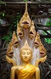 Goldfarbe von Buddha-Statue mit Schlange auf Waldhintergrund an Stockbild