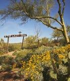 Goldfield miasto widmo kopyto_szewski wykopaliska cmentarz, Arizona Zdjęcia Stock
