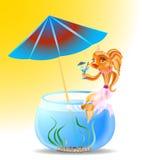 Goldfisch am Feiertag Stockfotografie