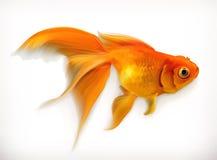 Goldfischvektorillustration Lizenzfreie Stockfotografie