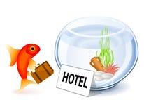 goldfish ξενοδοχείο διανυσματική απεικόνιση