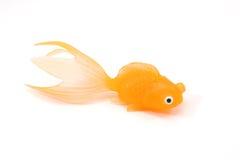goldfish παιχνίδι Στοκ Φωτογραφίες