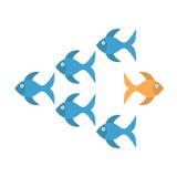 Goldfish που παίρνει το διαφορετικό τρόπο Στοκ φωτογραφίες με δικαίωμα ελεύθερης χρήσης