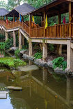 Goldfish στη για τους πεζούς γέφυρα στοκ φωτογραφία με δικαίωμα ελεύθερης χρήσης