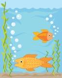 Goldfish illustration de vecteur