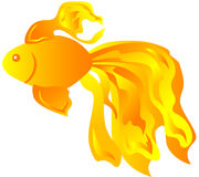 Goldfish. Vector illustration of a cute fish Royalty Free Stock Photo