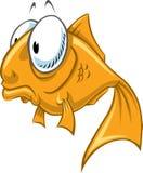 Goldfish Photographie stock libre de droits