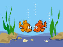 Goldfish. Cartoon Stock Photography