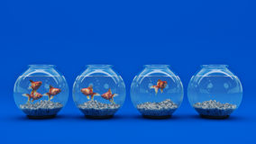 Goldfish in aquarium. 3d rendering Stock Image