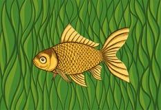 Goldfish on a background of green algae Royalty Free Stock Photo