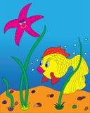 Goldfish. Royalty Free Stock Images