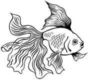 Goldfish black white. Goldfish or golden fish, black and white side view outline image Royalty Free Stock Image
