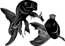Goldfish carp vector Royalty Free Stock Images