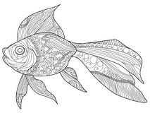 Goldfish Coloring book vector for adults Royalty Free Stock Image
